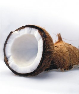 Matrace kokos - molitan - kokos - 120x60 cm