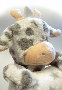 Dětská plyšová deka + hračka -žirafka